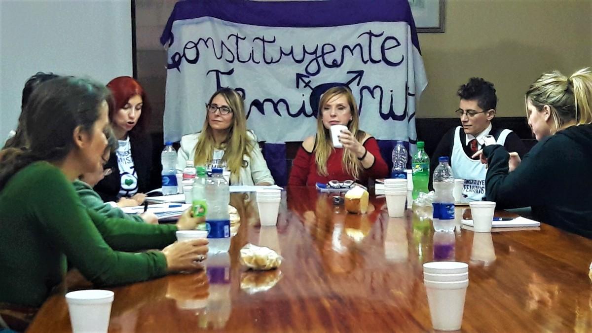 """""""Hacia una Constitución de Género"""" en la Facultad de Derecho, UBA"""
